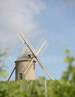 http://www.discoverbeaujolais.com/assets/images/Moulin-a-vent/Moulin-a-vent-1.jpg